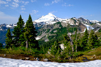 Mount Baker from the Artist Point Trail