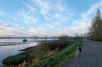 Morning by the Pitt River
