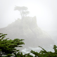 17-Mile Drive (Foggy At Times)