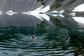Sweaming in the Iceberg Lake